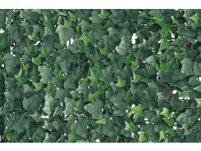 7584 1 zivy plot verdecor brectan 50cm x 50cm