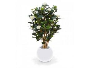 Umělá rostlina Camellia DeLuxe (100cm) - krémová