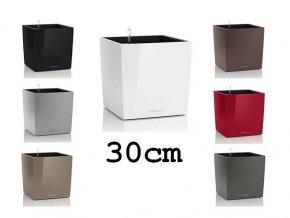 Main Cube obal 30