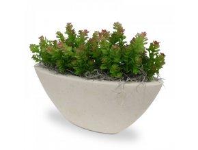 Umělá rostlina Mini Sedum (18cm)