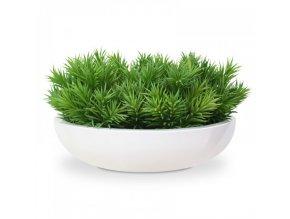 Umělá rostlina Happy Bean (23cm)