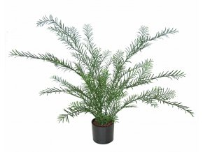 Fern Irish w pot 50 cm Green 5432GRN