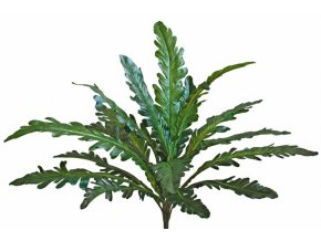 69130 asplenium forest bush 50 cm green 5485grn