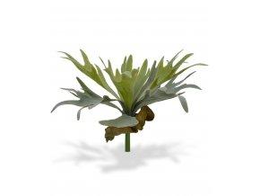 Umělá rostlina Parožnatka (30cm)