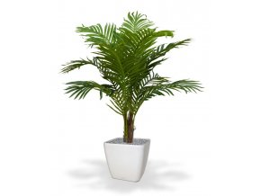 170610 paradize palm promo 100 quadro 28 wit