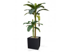 170518 banaan x2 180 panama 50 shiny black
