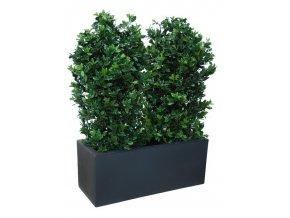 91356 osmanthus uvr fence 1 m lin 160 cm green 5805uvr 1