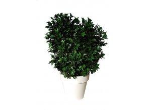 31715 laurel uvr boschetto 160 cm green 60101uvr