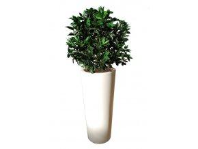 13896 laurel uvr bush 60 cm green 60102uvr