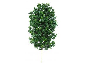 59944 osmanthus uvr plant 160 cm green 58106uvr