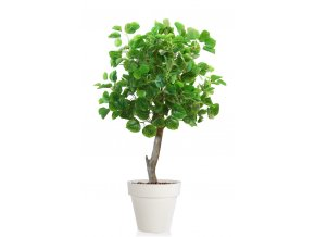 Aspen Topiary 120 cm Green V5544G01