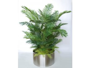Areca boschetto 190 cm green v5568001