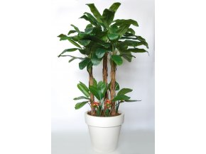 Banana Tropical Bush 280 cm Green Oragne V5569002