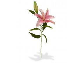 510045 lelie tak deluxe 55 roze