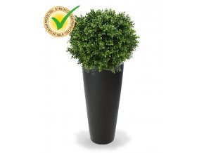 138205uv buxus ball 50 tondo alto 34 antraciet