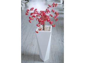 Cherry Wild Baby Tree 110 cm Pink V1084P02