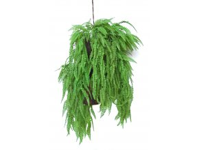 Fern Fabulosa Country Hanging 80 cm Green 5577000