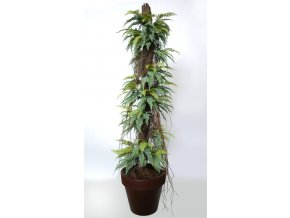 Fern Stratus on Pineapple 220 cm Green V5509003