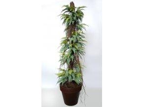 Fern Stratus on Pineapple 220 cm Green V5509003