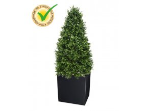 138514uv buxus tower 140 panama 40 shiny black