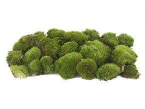 Pole moss zeleny 3x