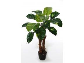Pothos Plant 90 cm Green V5551002