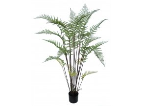 Fern Tree w pot 155 cm Green 5573GRN