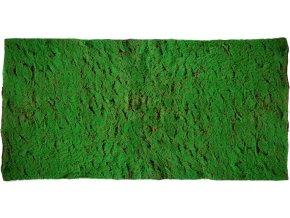 Moss Base 200x100 cm Green 5508GRN