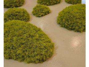 Lichen Dunes 2