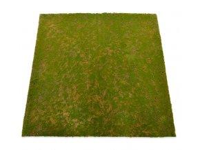 Mech koberec 100x100cm