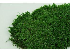 Flat moss green detial2