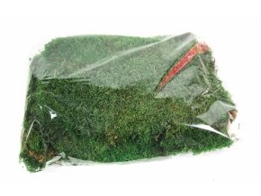 preserved flat moss green in bag