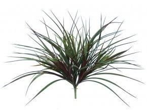 99803 grass bush vanilla 40 cm burgundy 5559bur