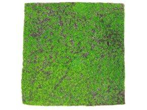 Mech koberec Base VI main