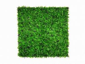 Grass lila