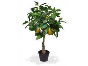 194107 citroen kunstplant 70