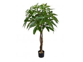 Umělý strom Pachira na kmeni (75cm)
