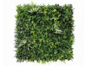 Vegetatie fijn gevarieerd Plantenwand1