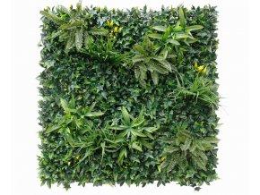 Zelená stěna Jungle Green