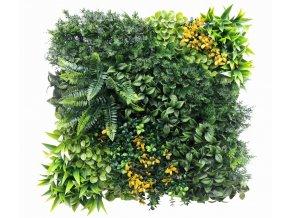 Vegetatie varen yellow