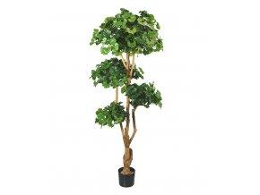 Umělá bonsai Ginkgo (170cm)