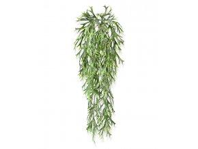 205806 hertshoorn hangplant 65