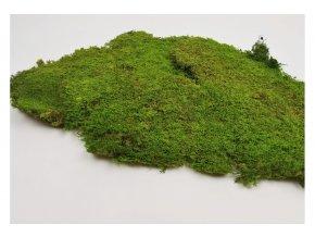 Flat moss Rock 1