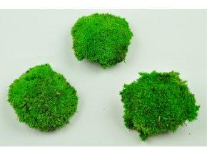 Pole moss sv zeleny Mini
