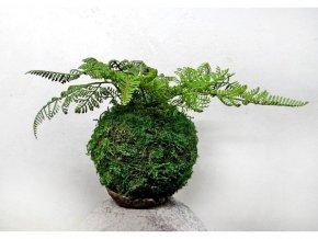 mechová kokedama s umělou květinou - kapradí