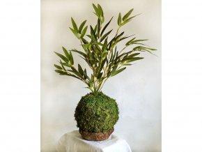 mechová kokedama s umělou květinou - bambus