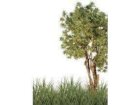 Umělý strom Dracaena Reflexa Gigantea (320cm) vícebarevná  dracena