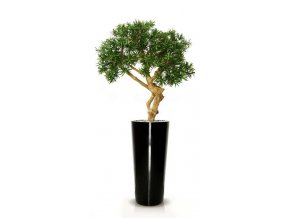 Umělý strom Podocarpus Crown (Varianta 200cm)