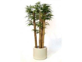 Umělý strom Bambus Jumbo x4 (250cm)