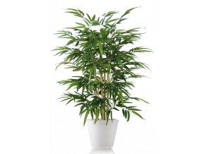 Umělý strom Bambus Wild Bush (Varianta 250cm)